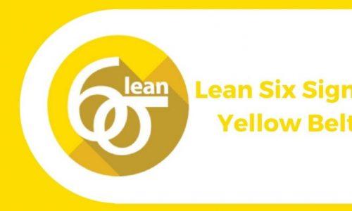 Six Sigma Yellow Belt Training